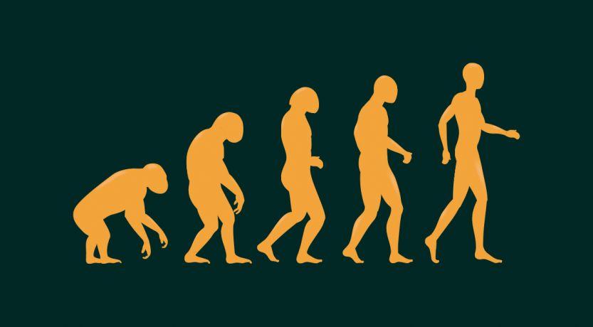 Cómo la teoría de la evolución cambió al mundo