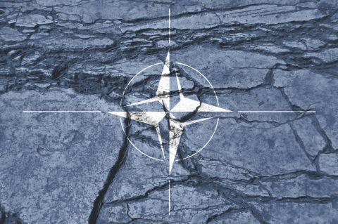 ¿Sobrevivirá la OTAN?