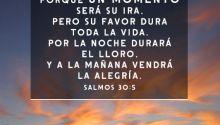 8 versículos alentadores de la Biblia acerca del consuelo