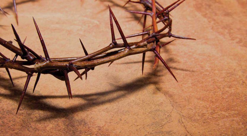 Jesucristo enseñó la paz y la no violencia