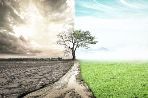 ¿Por qué nuestro mundo actual está bajo maldiciones antiguas?