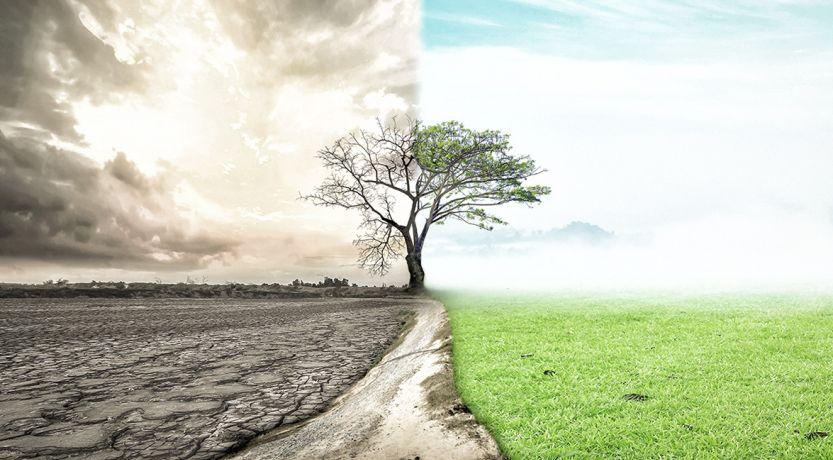 ¿Porque nuestro mundo actual está bajo maldiciones antiguas?