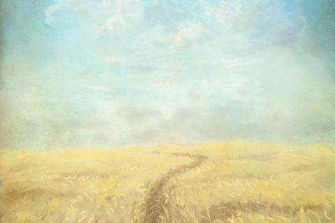 """""""Yo soy el camino, y la verdad, y la vida"""""""