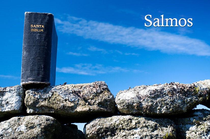 El libro de Salmos - Vida, Esperanza y Verdad